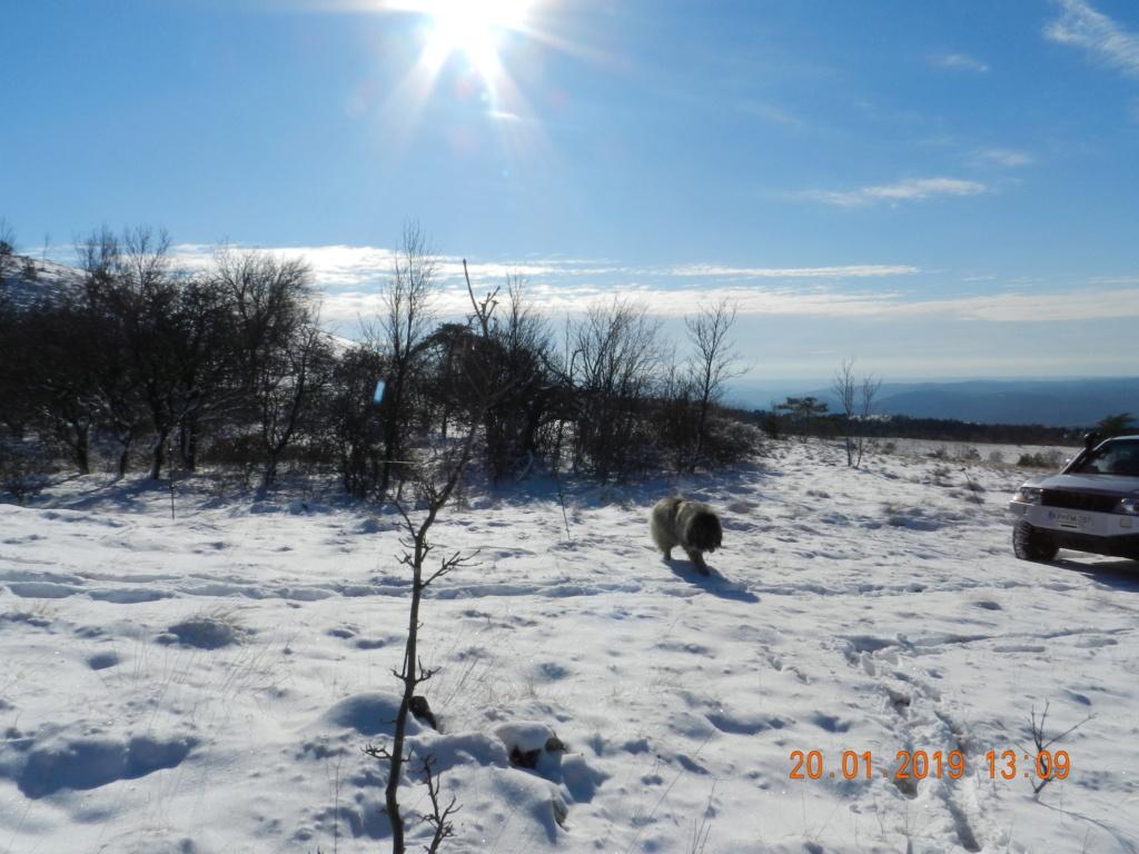 20 gennaio 2019, con il 3 Kraji sul monte Golic 20_gen27