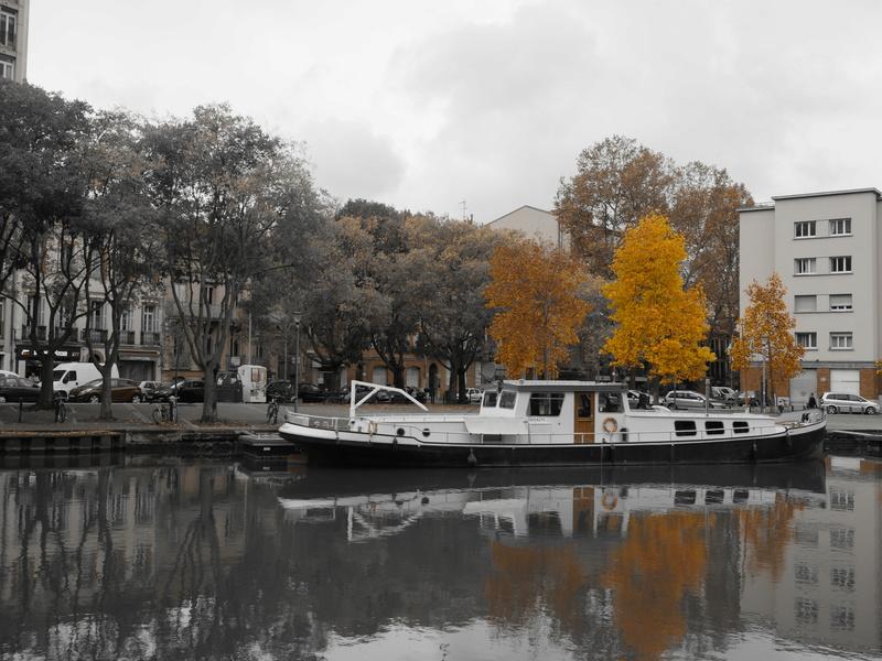 Port Saint Sauveur P1010312