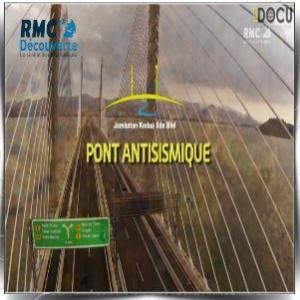 Pont antisismique. Pont-a10
