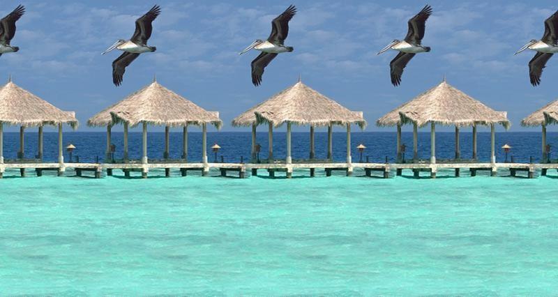 Stereograms Maldiv10