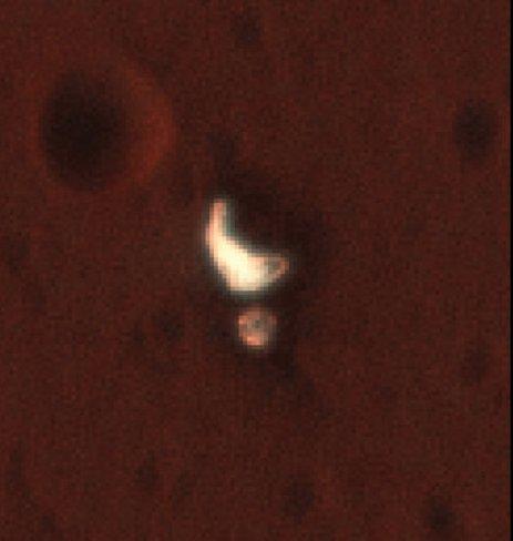 [ExoMars 2016] Suivi de l'EDL de Schiaparelli et de l'insertion orbitale de TGO. - Page 25 112