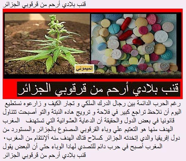 Le Maroc face a la guerre psychotropique Algerienne المغرب ضحية حرب مهلوسات بوتفليقة Drog1210