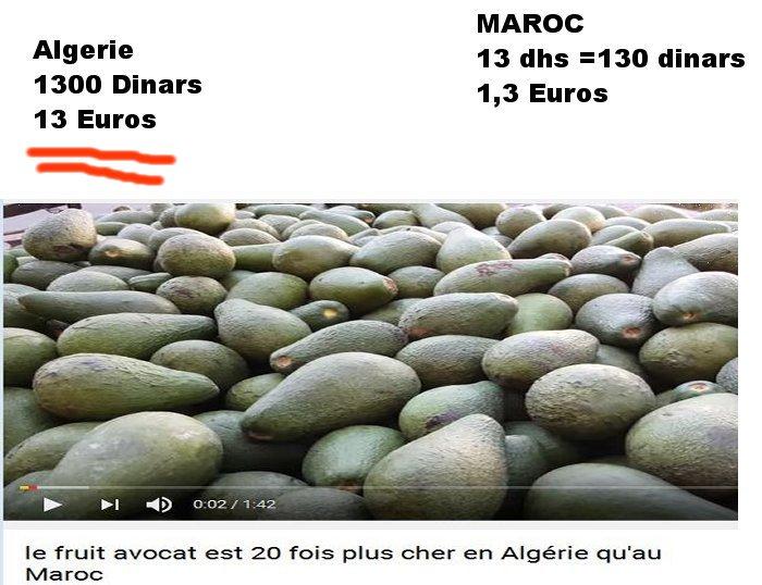 algerie - je suis Algerien ..ou sont mes droits أنا  جزائري  ....أين حقي Avocat10