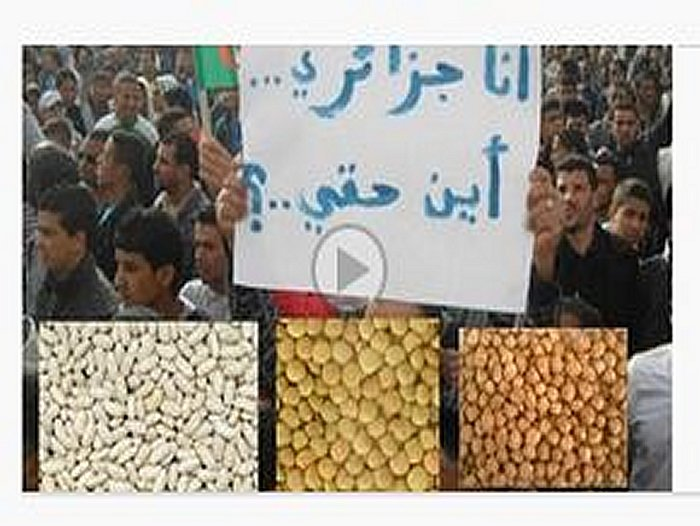 algerie - je suis Algerien ..ou sont mes droits أنا  جزائري  ....أين حقي Captur11