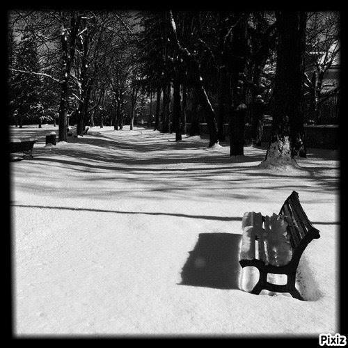 D'hiver et varié.. 16406511