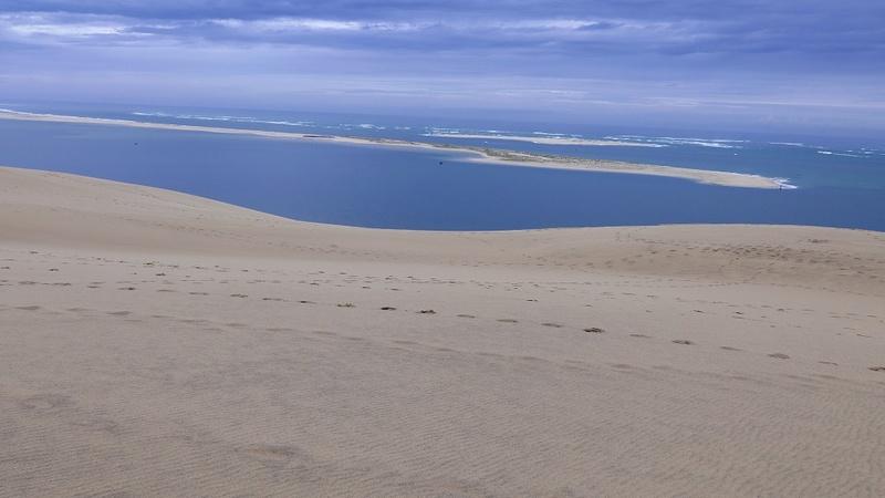 Dune automnale.. P1080814