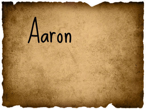 Pearce Tribal Council 1 Aaron_13