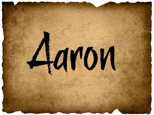 Pearce Tribal Council 1 Aaron_16