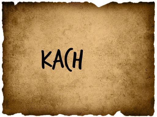 Brady Tribal Council 4 Kachin10