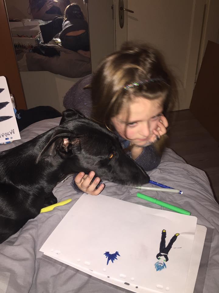 NEGRITO, galgo noir, 4 ans Adopté  Negrit10