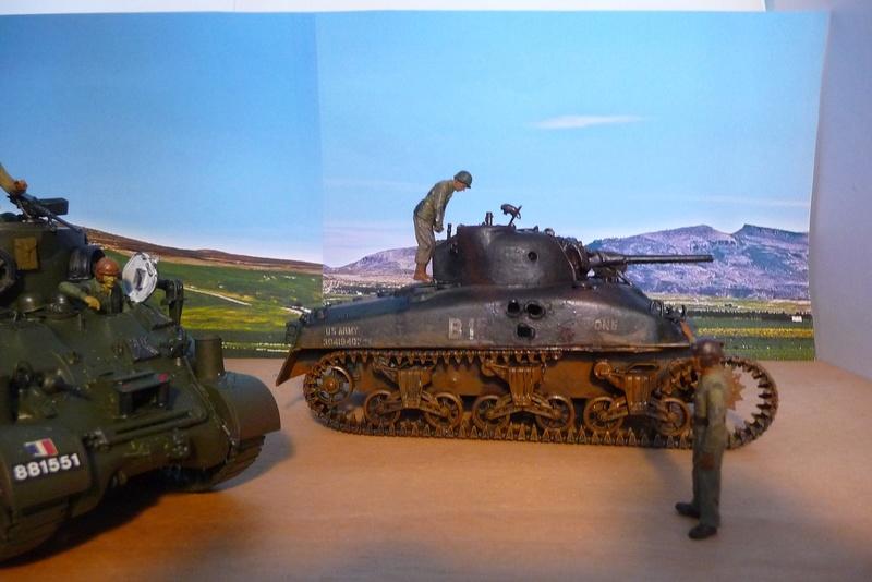ITALERI 1/35 éme= Récupération d'un Sherman détruit par un Discovery . P1070129