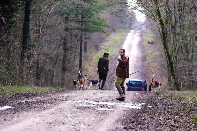 Rallye Au Pas Du Lièvre - Page 3 00618