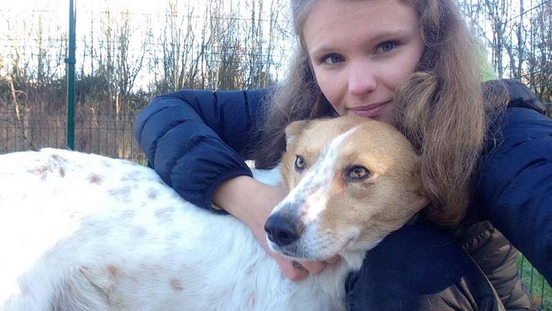 BLISS , née en 2013 - ( Alina) - Adoptée via l'ARPA (Dpt91) Blissa10