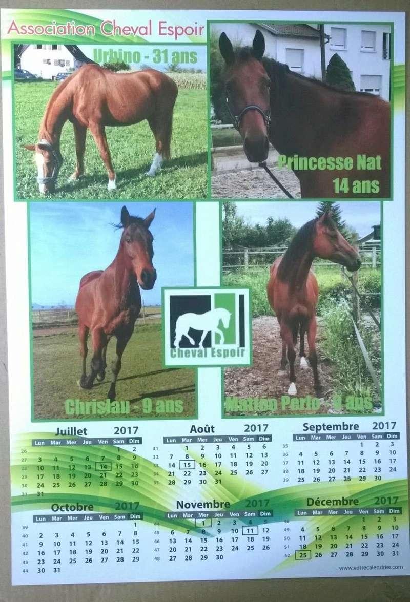 Calendriers Cheval Espoir 2017 Cal210