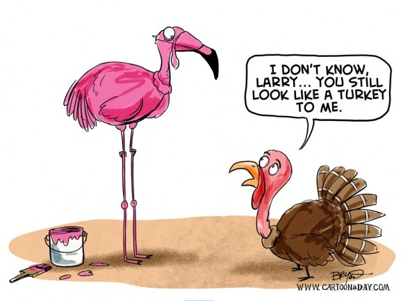 Happy Thanksgiving!  Image12