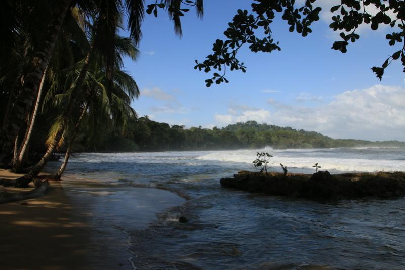 Nature au Costa Rica Img_6218