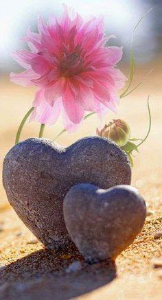 Pour la venue de l'Amour dans le monde, rendez-vous tous les dimanches soir 20 heures.  - Page 28 9b08da10