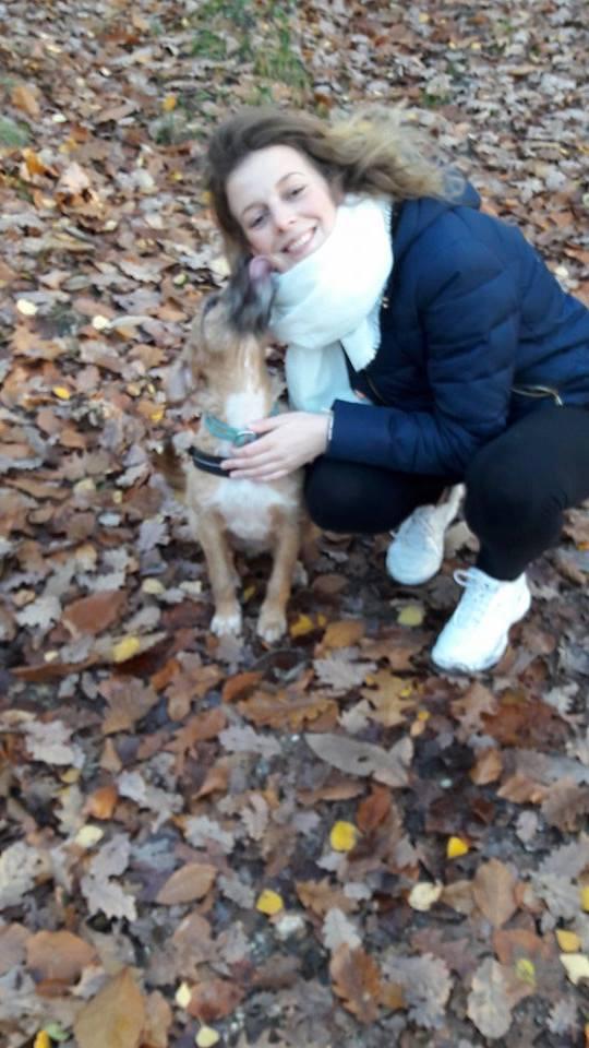 VICTOR un chien en grande souffrance - BULGARIE 15228010