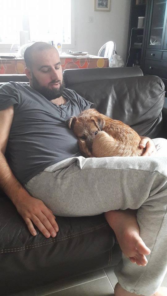 VICTOR un chien en grande souffrance - BULGARIE 15240210