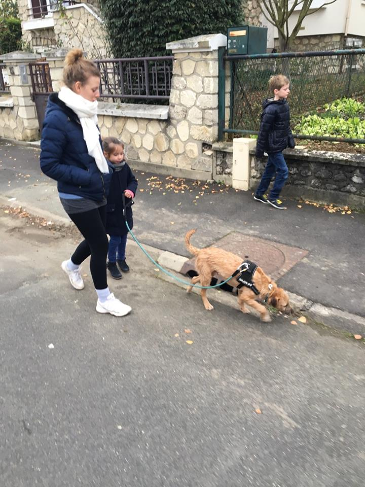 VICTOR un chien en grande souffrance - BULGARIE 16652611