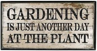Funny garden pics Day_at10