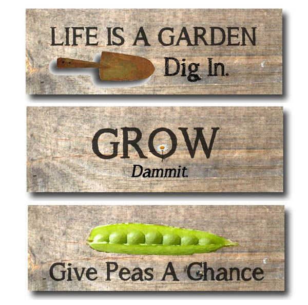 Funny garden pics Give_p10