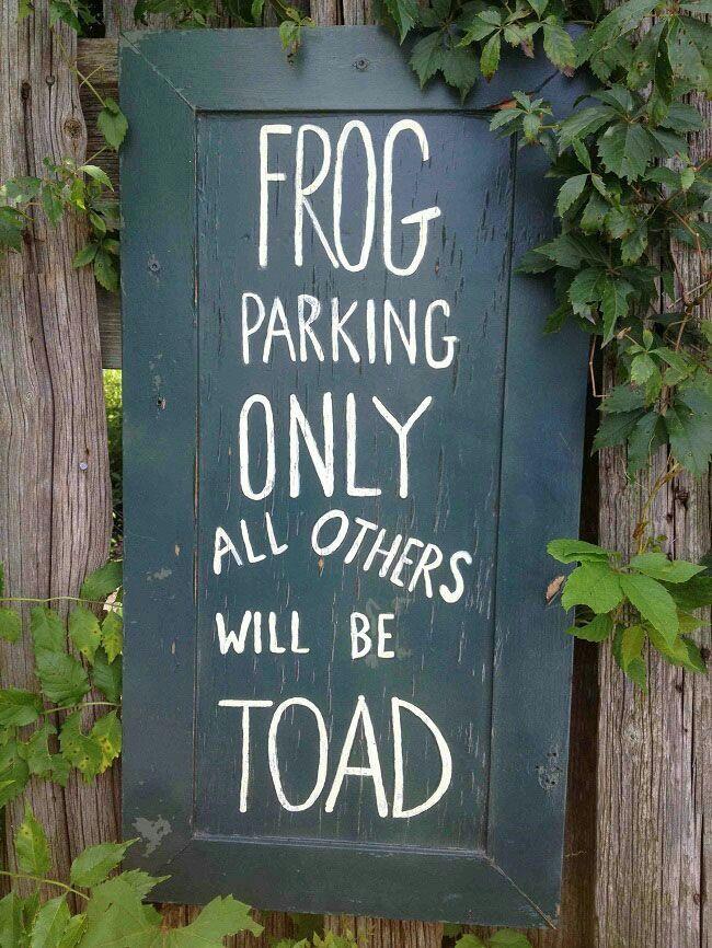 Funny garden pics Toad10