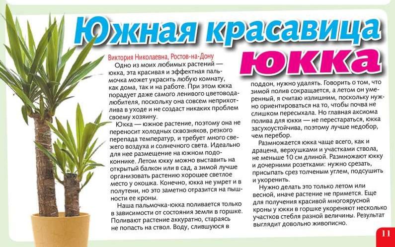 статьи о растениях из  газет и журналов - Страница 2 111010