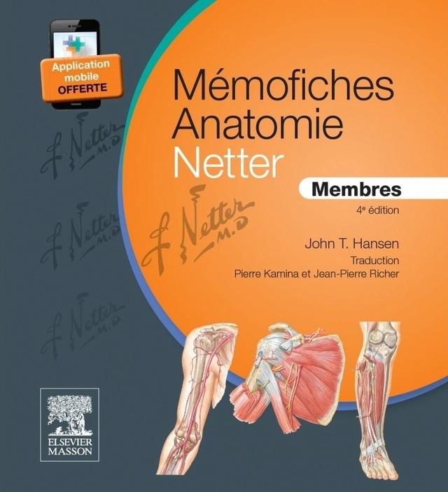 Livres Médicales - MÉMOFICHES ANATOMIE NETTER - MEMBRES Mymofi11