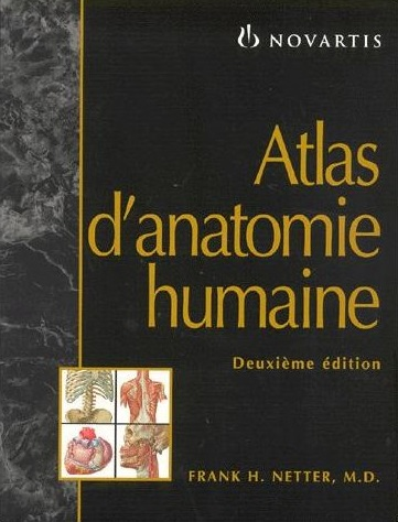 Livres Médicales - Atlas d'anatomie humaine, 2e édition Netter10