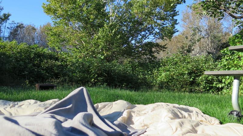 Photo de camping en tout genre avec quelques mots ... Img_7010