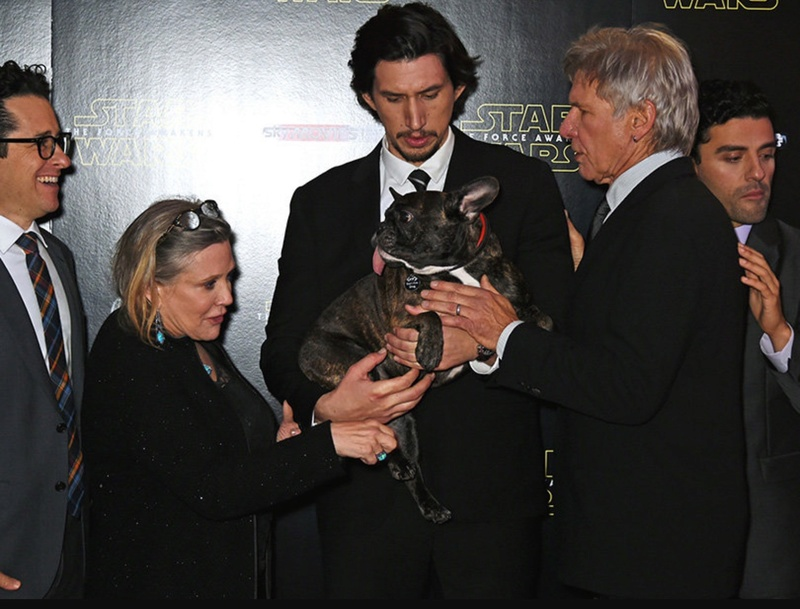 Adam Driver Image Thread - Page 37 Img_0524