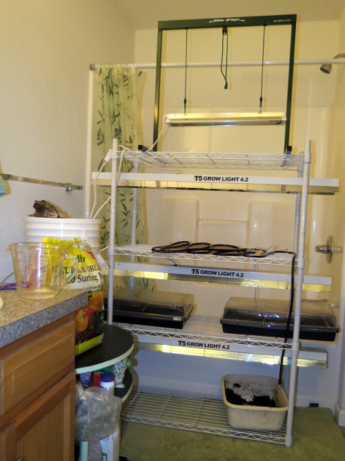 Seed starting station.. - Page 5 Img_8311