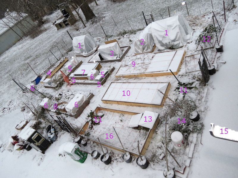 Winter Gardens - Photos - Page 3 Winter10