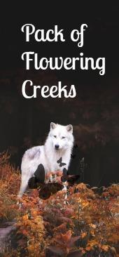Pack of Flowering Creeks