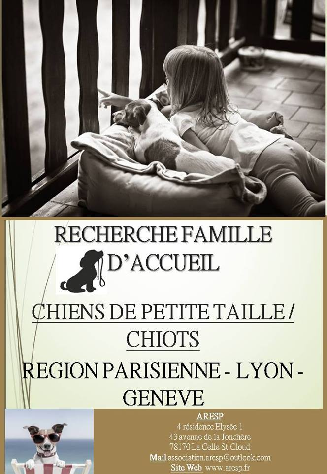 Affiches de Recherche de Familles d'Accueil 16174411