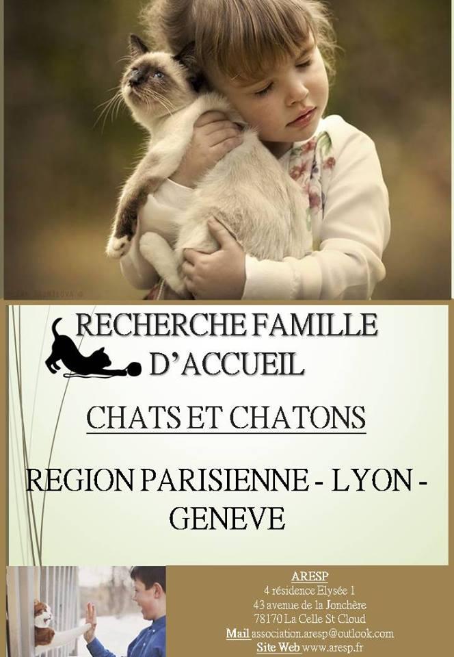 Affiches de Recherche de Familles d'Accueil 16265410
