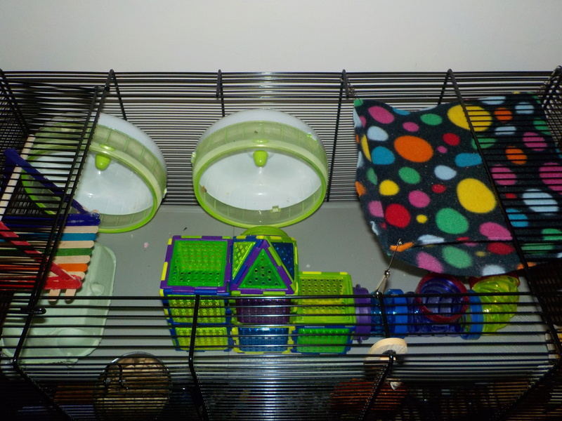 New Cage 210