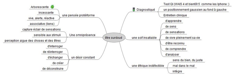 Mind map collective sur la douance ? Surdou10
