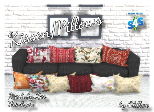 TS4 Pillows_Kissen 19_12_10