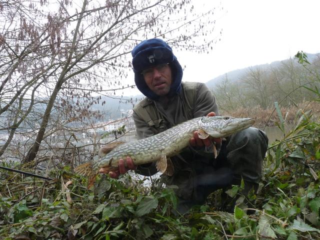 Qui fait du poissons en novembre??? P1170910