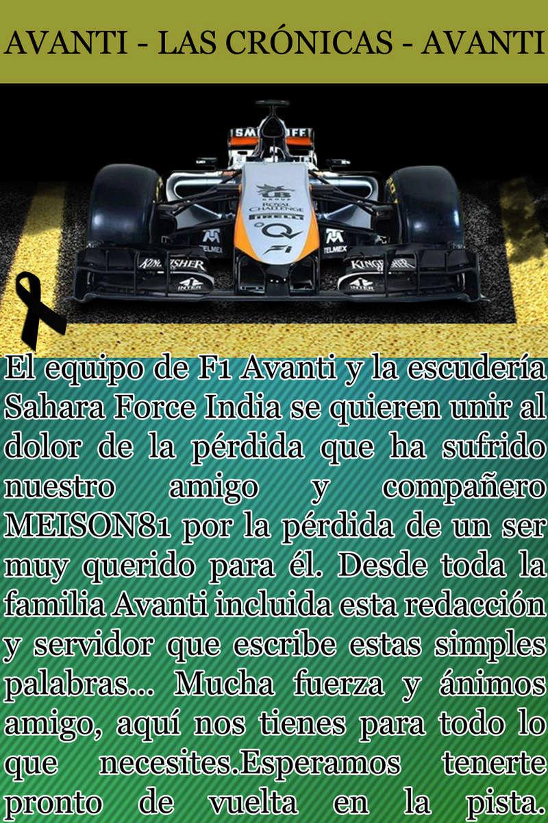 MAGAZINE F1 AVANTI. NÚMERO 7 (20/12/2016) 35_for10