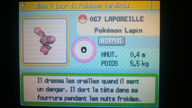 Les Pokémon Shiny Lapore11
