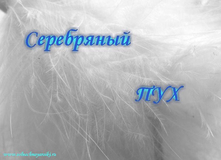 Серебряный Пух 23593510