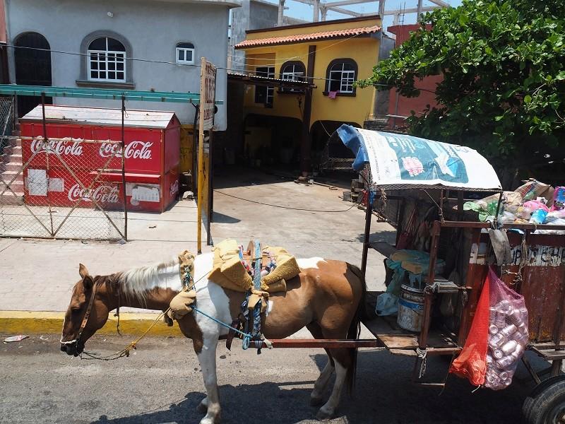 Mexique-Continent Ciudad10
