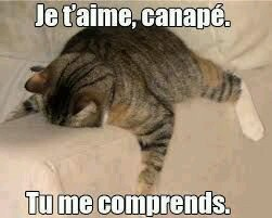 :) Un Post Pour Dire Je T'Aime (: (Du 10/05/15 au 30/01/17) - Page 36 5e4c1410