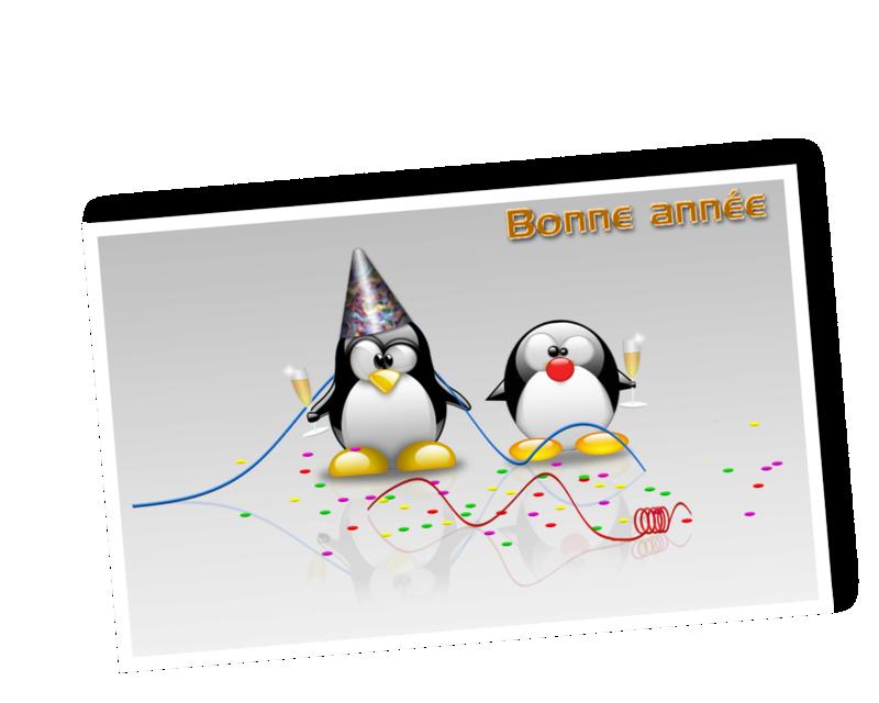 Bonne année 2017 au forum ! 2510