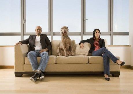 На Аляске принят закон о совместной опеке над домашними животными в случае развода Glm5pv10