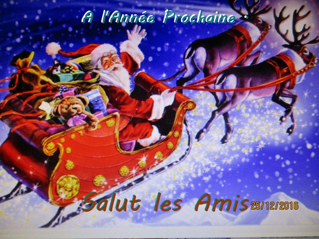 Noël  2016 - Page 2 Img_1011