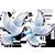 15.10.1253 г., Сохрани в своем сердце свет и надежду, но будь готова к худшему Yaza_e17